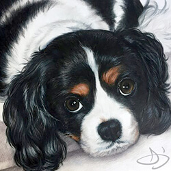 Cavalier King Charles Spaniel Dog Portrait Painting