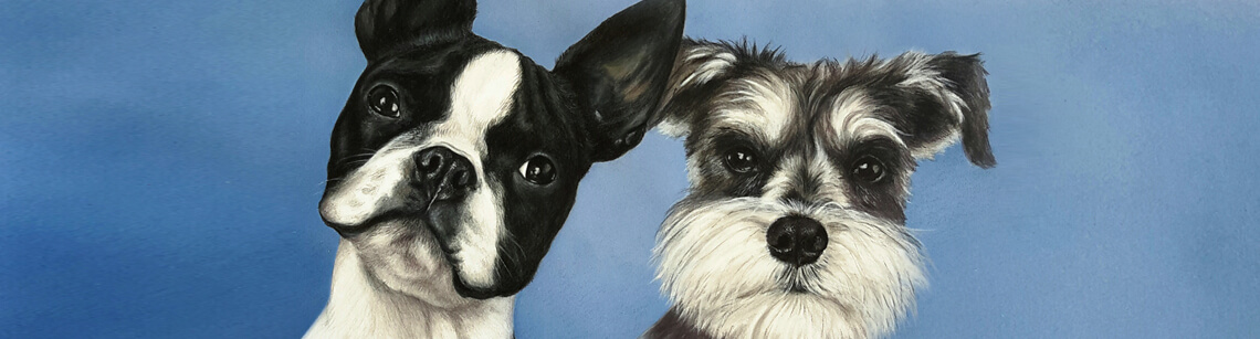 Contact Realistic Pet Portraits from photos artist Daniele Jones