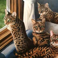 Cat portrait of Savannah cats