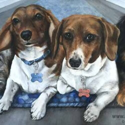 Dachshund Dog Portrait Painting