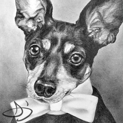 Franklin Dog Portrait Art Drawing