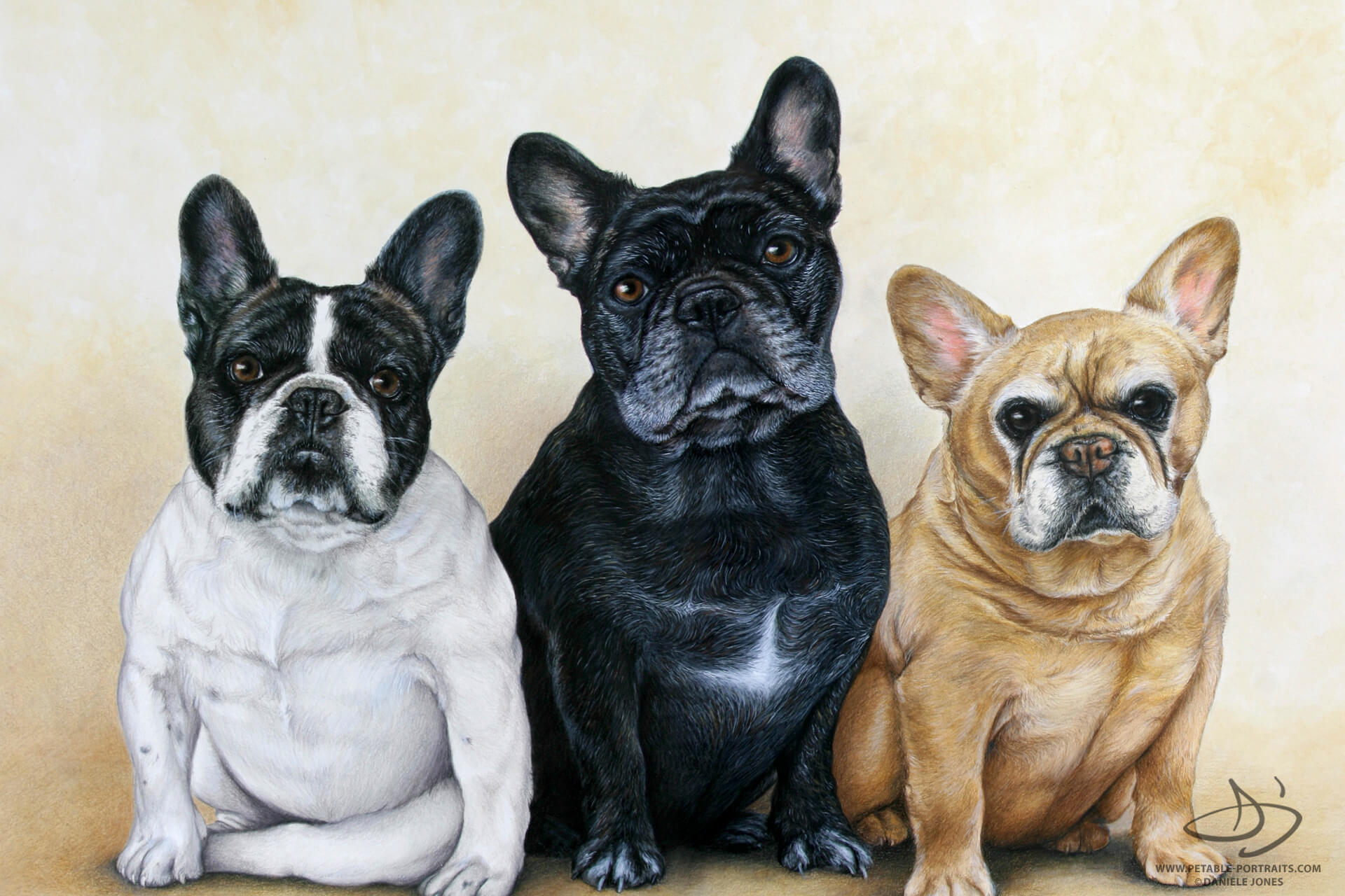 Pet Portrait for French Bulldogs