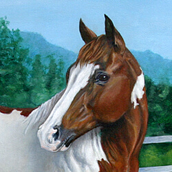 Paint Horse Portrait Painting