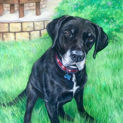 Portrait painting of a black dog
